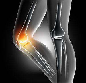 farmacia Knee Active Plus